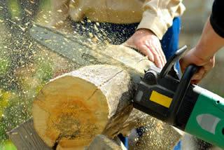 Bois de chauffage gratuit avec l 39 affouage - Support pour couper du bois de chauffage ...