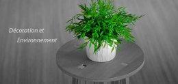 L'éco-responsable s'invite aussi dans la décoration de votre maison